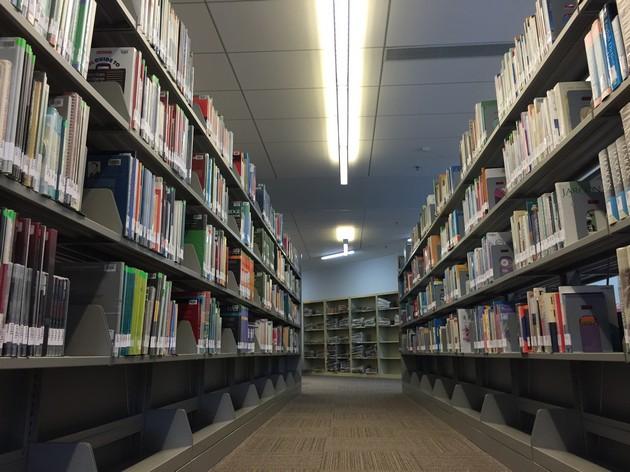 走進了圖書館 彷彿是個森林 瞬間變得渺小