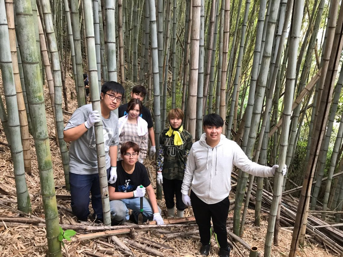 Participating in a rural revitalisation project to clear a bamboo forest.