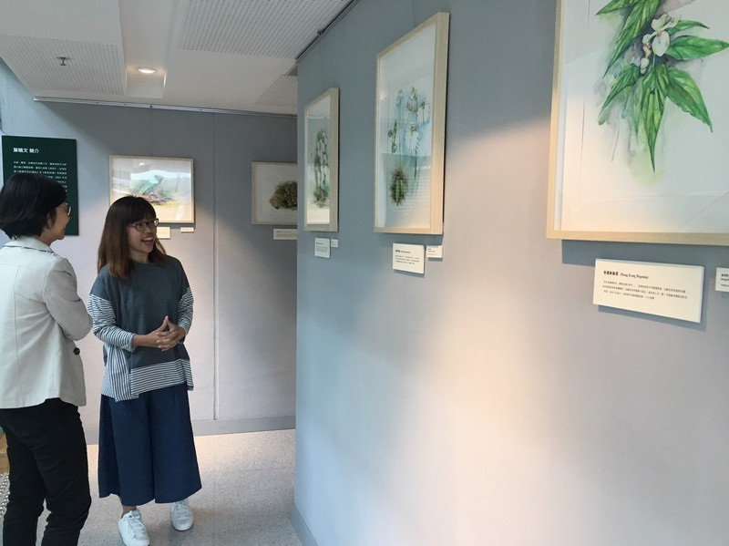 Ip introduced her paintings of Hong Kong native plants and animals.
