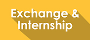 exchange and internship