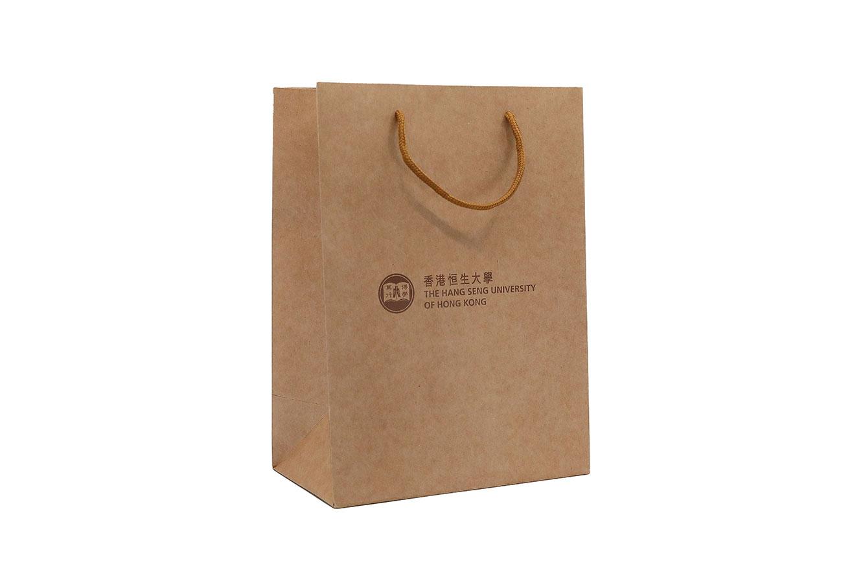 Paper bag_1