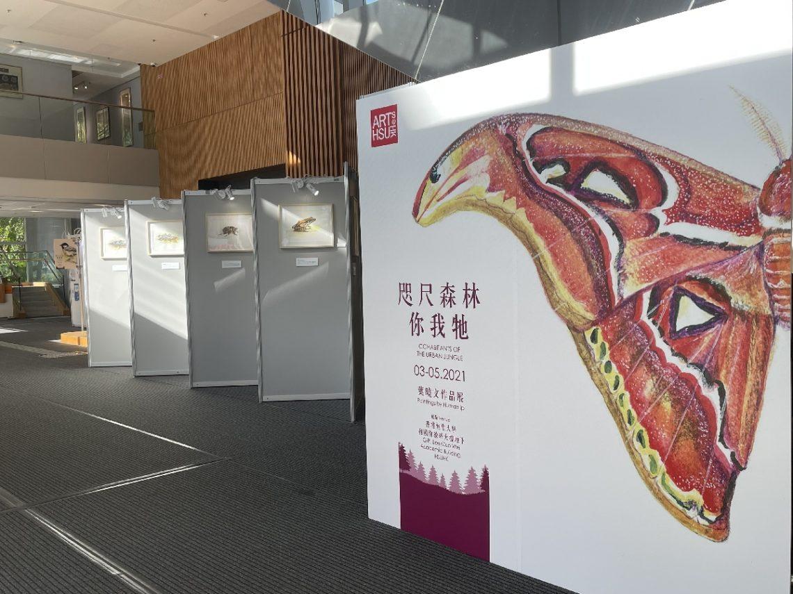 Human Ip's art exhibition